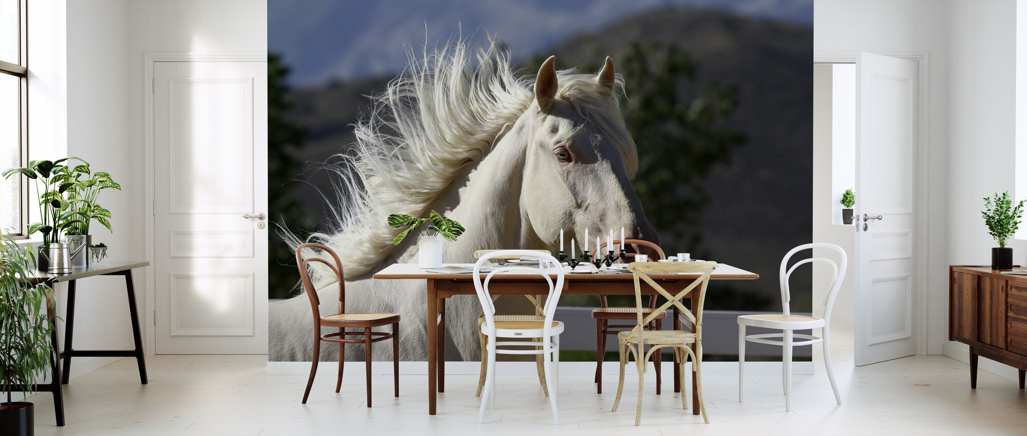 white lusitano horse beliebte fototapete photowall. Black Bedroom Furniture Sets. Home Design Ideas