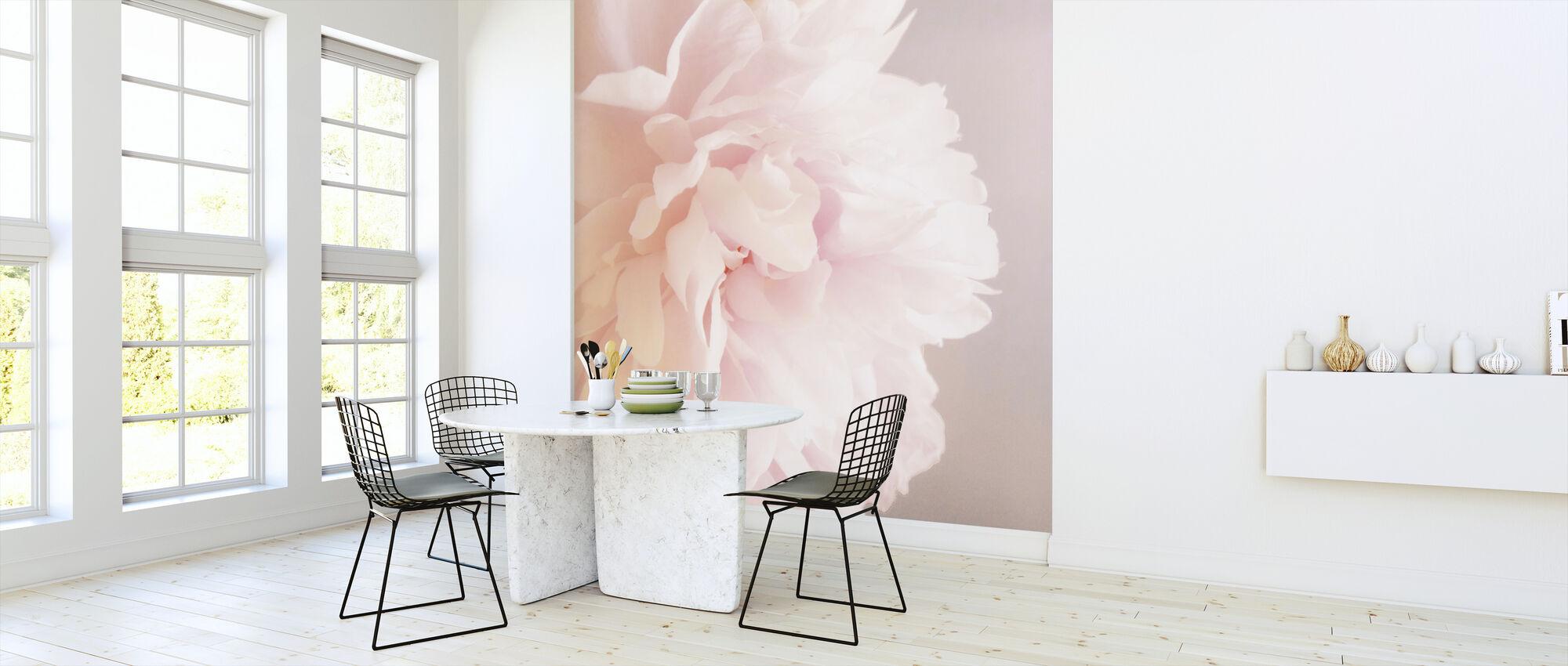 Light Pink Peony - Wallpaper - Kitchen