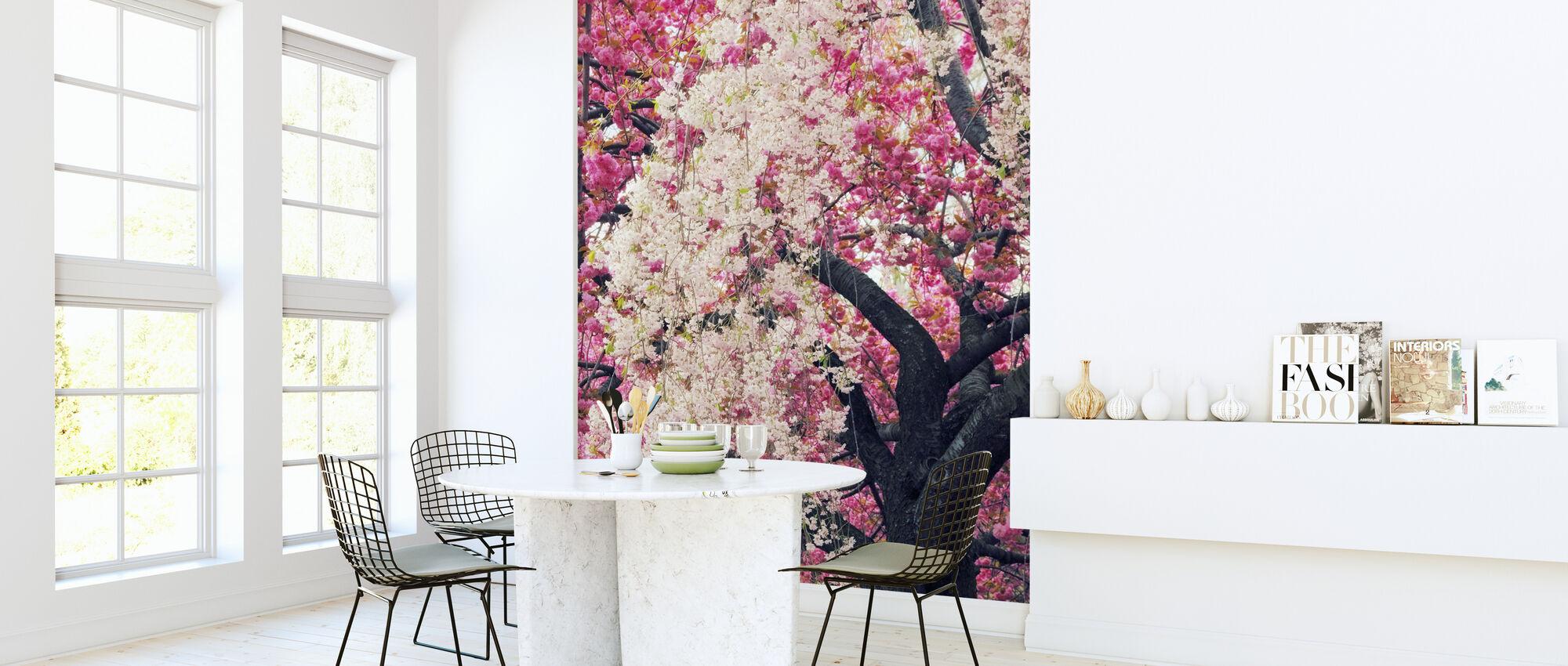 Asiatisk Körsbär - Tapet - Kök