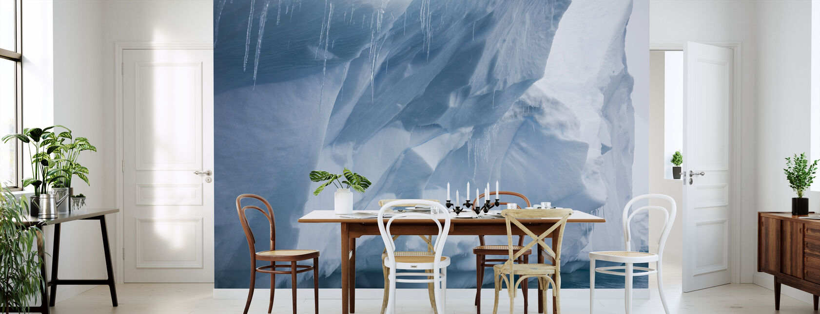 Sopel na Antarktydzie - Tapeta - Kuchnia