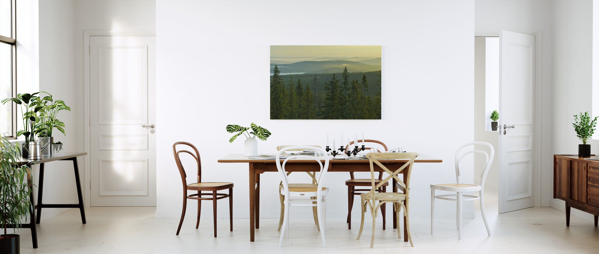 Spruce Tops in Skuleskogen National Park, Sweden - Canvas print - Kitchen