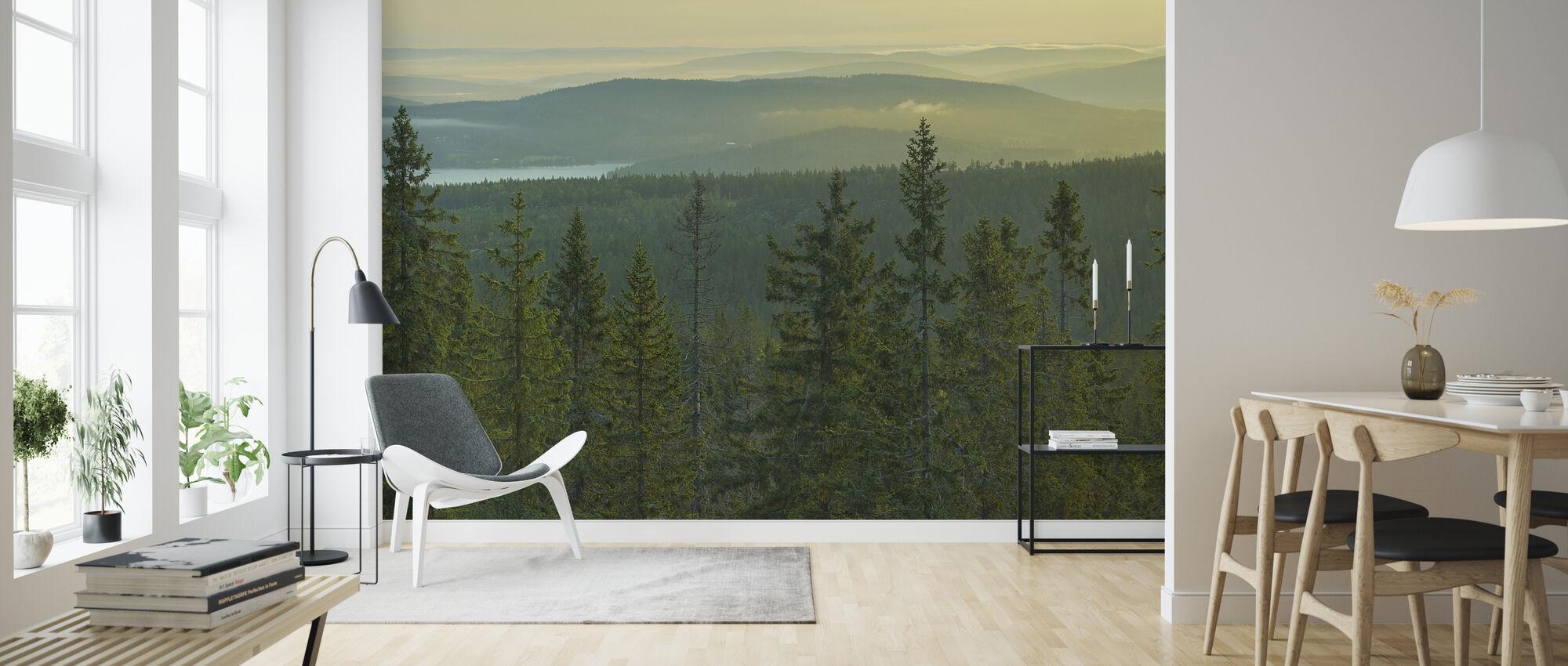 Spruce Tops i Skuleskogen Nationalpark, Sverige - Tapet - Stue
