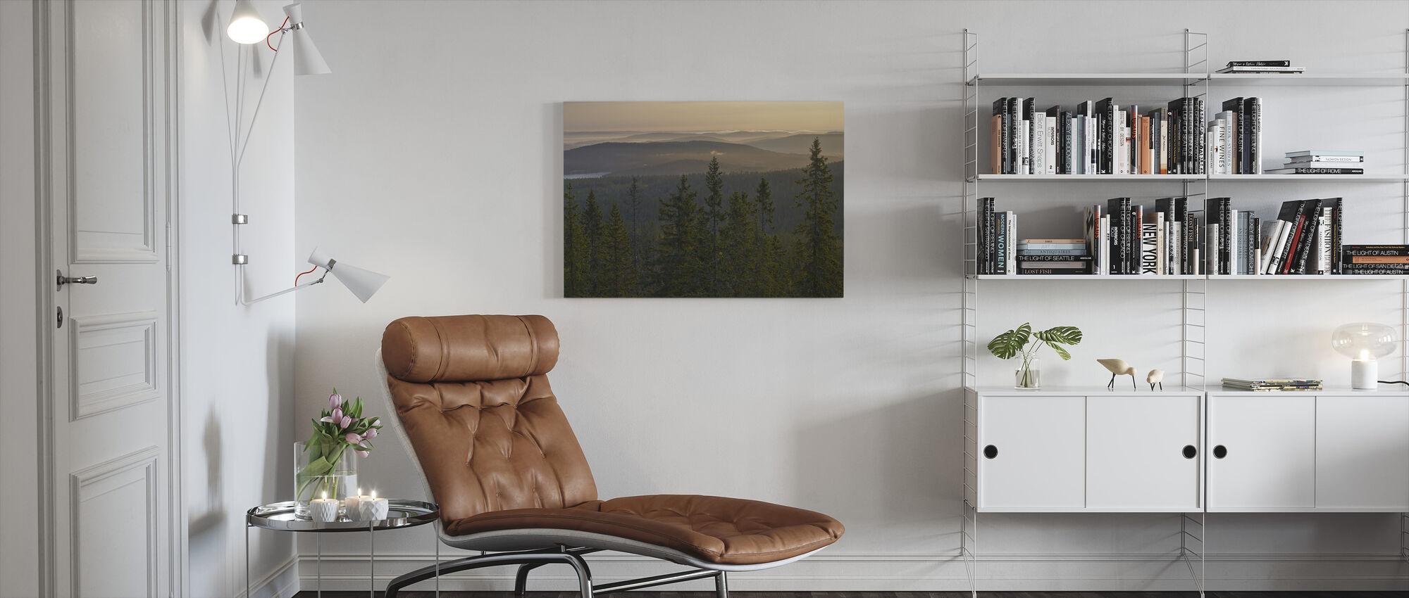 Skuleskogen National Park Spruces, Sweden - Canvas print - Living Room