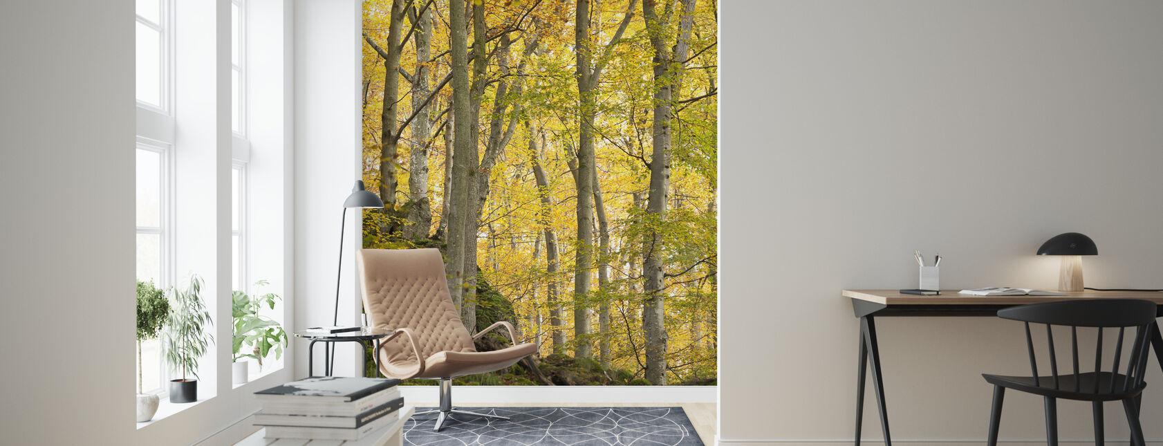 Herbst Espenbaum - Tapete - Wohnzimmer