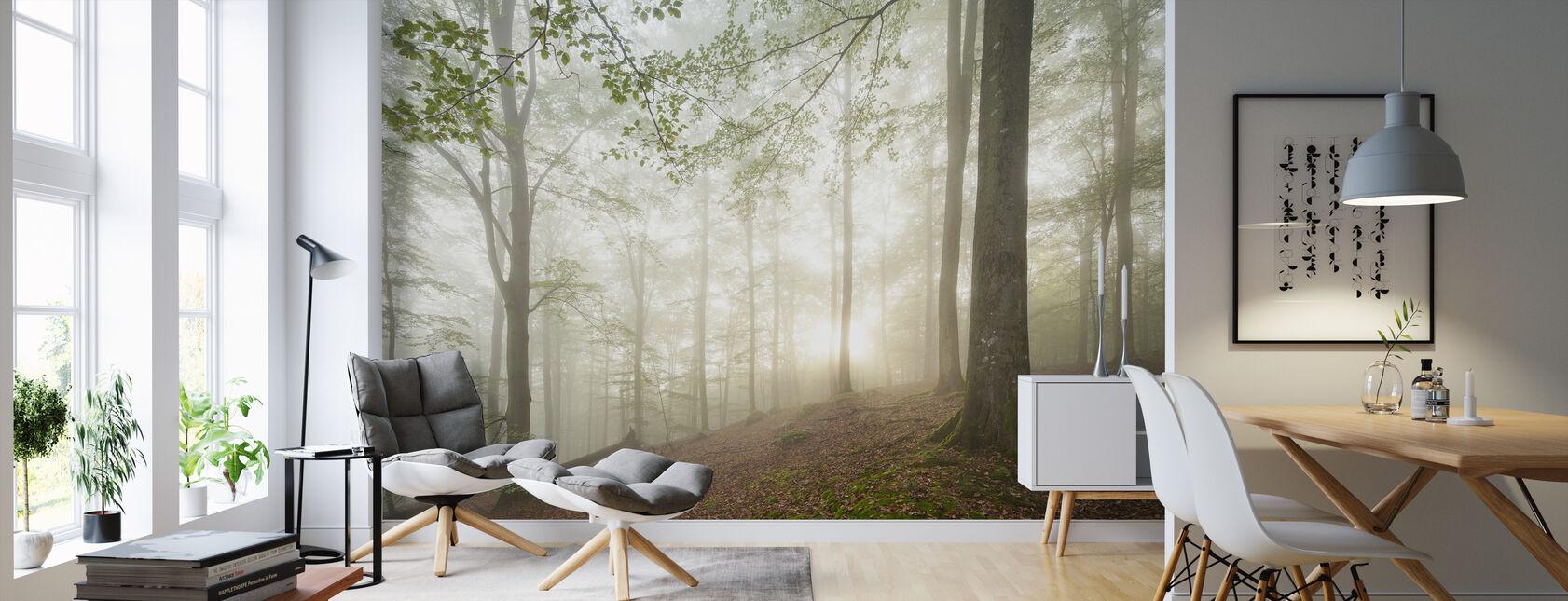 Forêt suédoise de hêtres II - Papier peint - Salle à manger