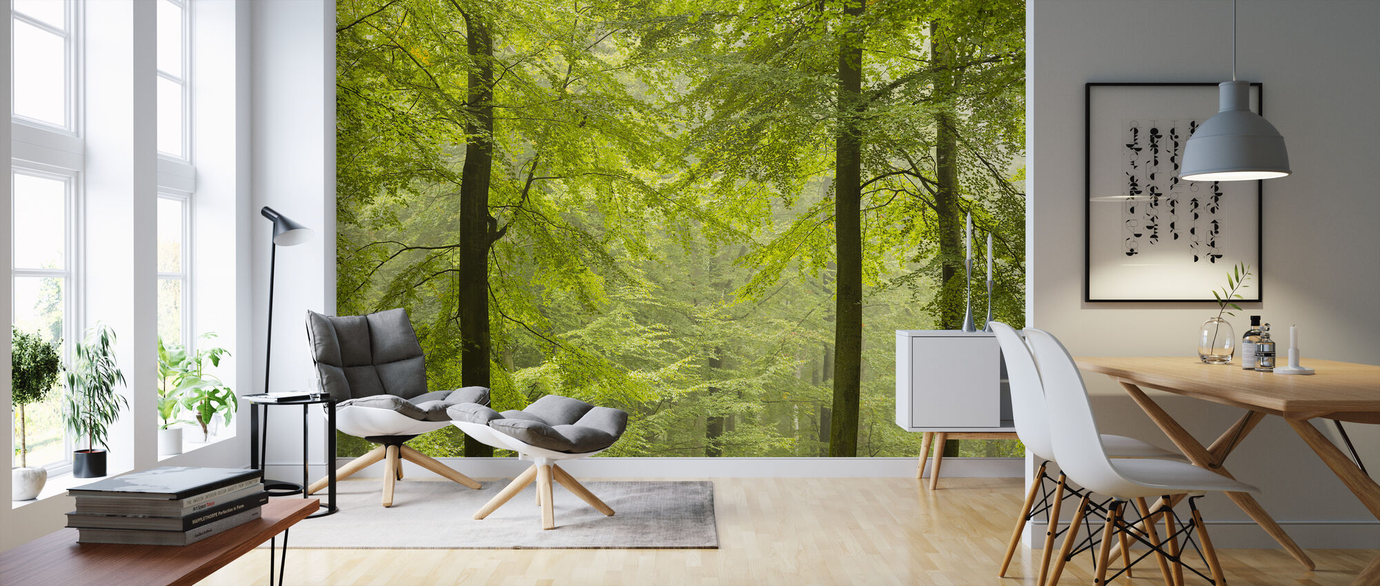 Beech Forest in Torup, Sweden I, Europe - Wallpaper - Living Room