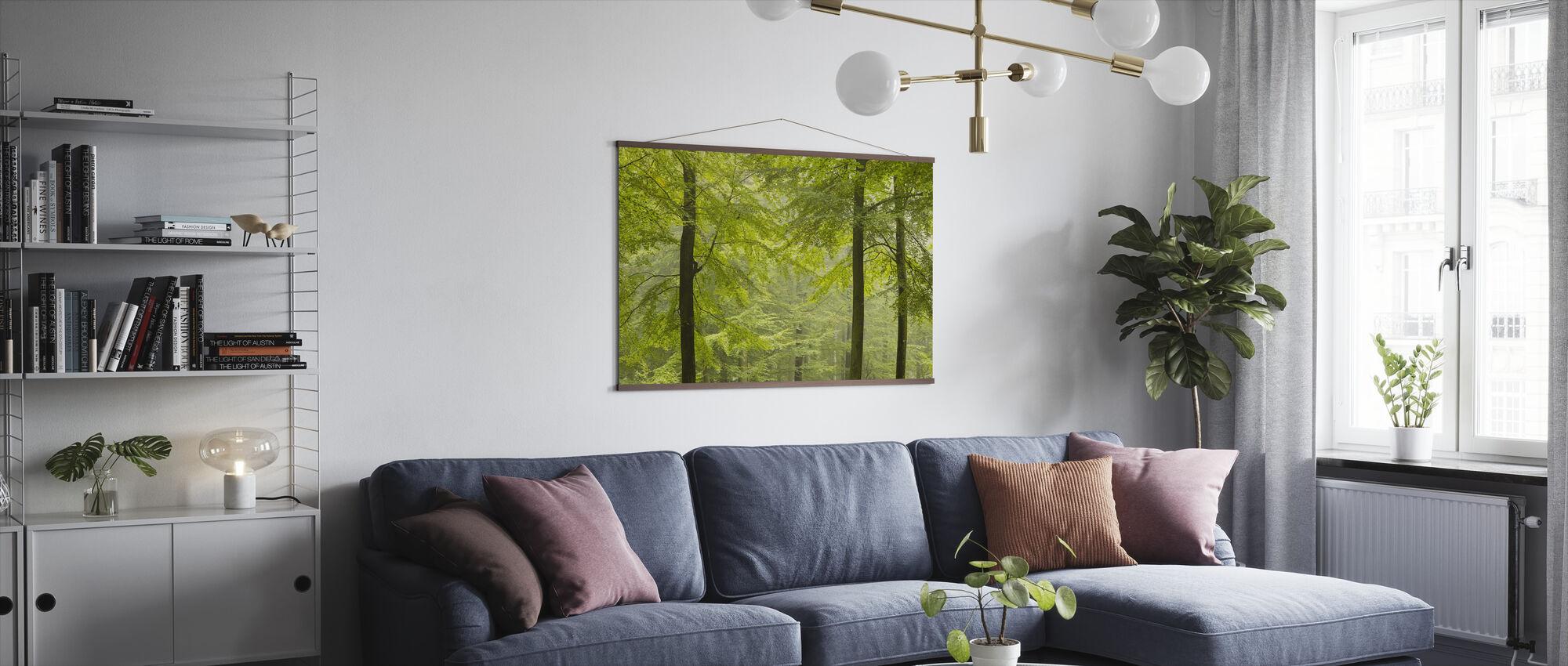 Beech Forest in Torup, Sweden I, Europe - Poster - Living Room