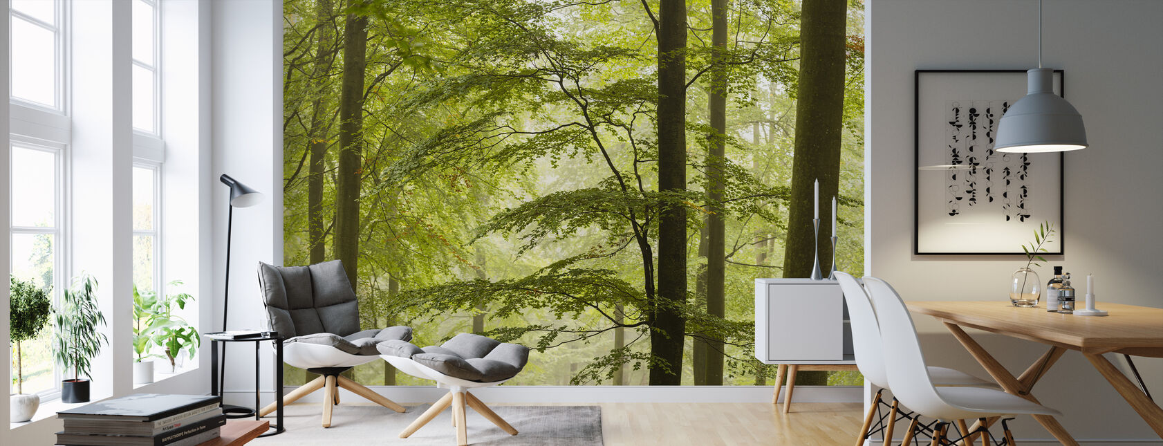 Beech Forest in Torup, Sweden II, Europe - Wallpaper - Living Room