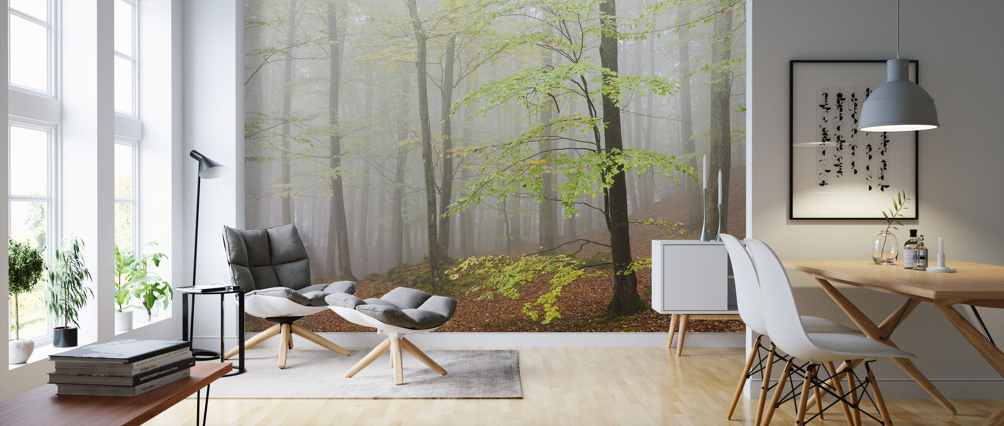 Clowing Hallar Beech Forest, Sweden I, Europe - Wallpaper - Living Room