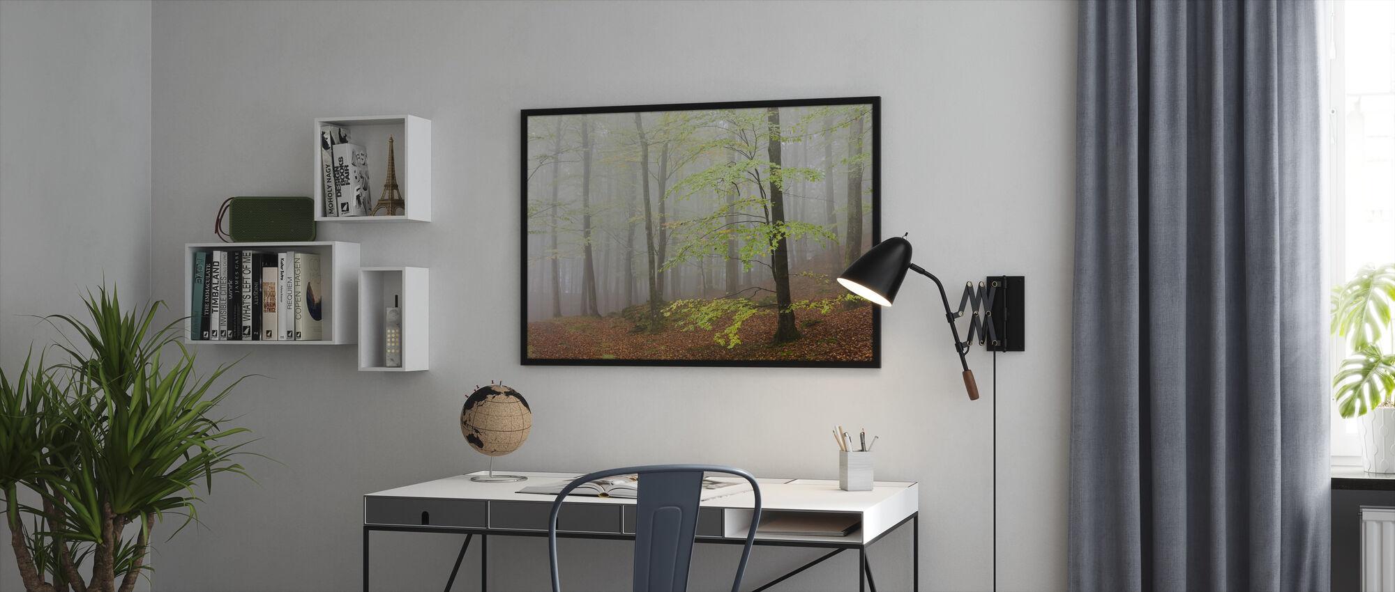 Clowing Hallar Beech Forest, Sweden I, Europe - Framed print - Office