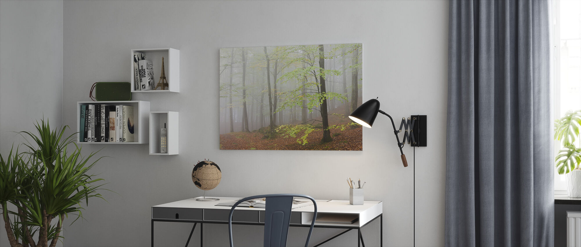 Clowing Hallar Beech Forest, Sweden I, Europe - Canvas print - Office