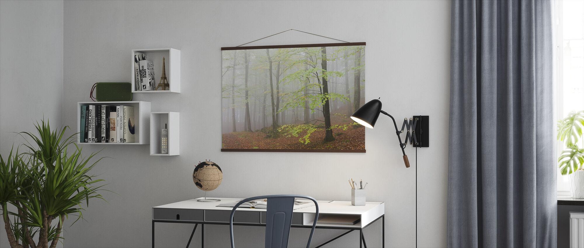 Clowing Hallar Beech Forest, Sweden I, Europe - Poster - Office
