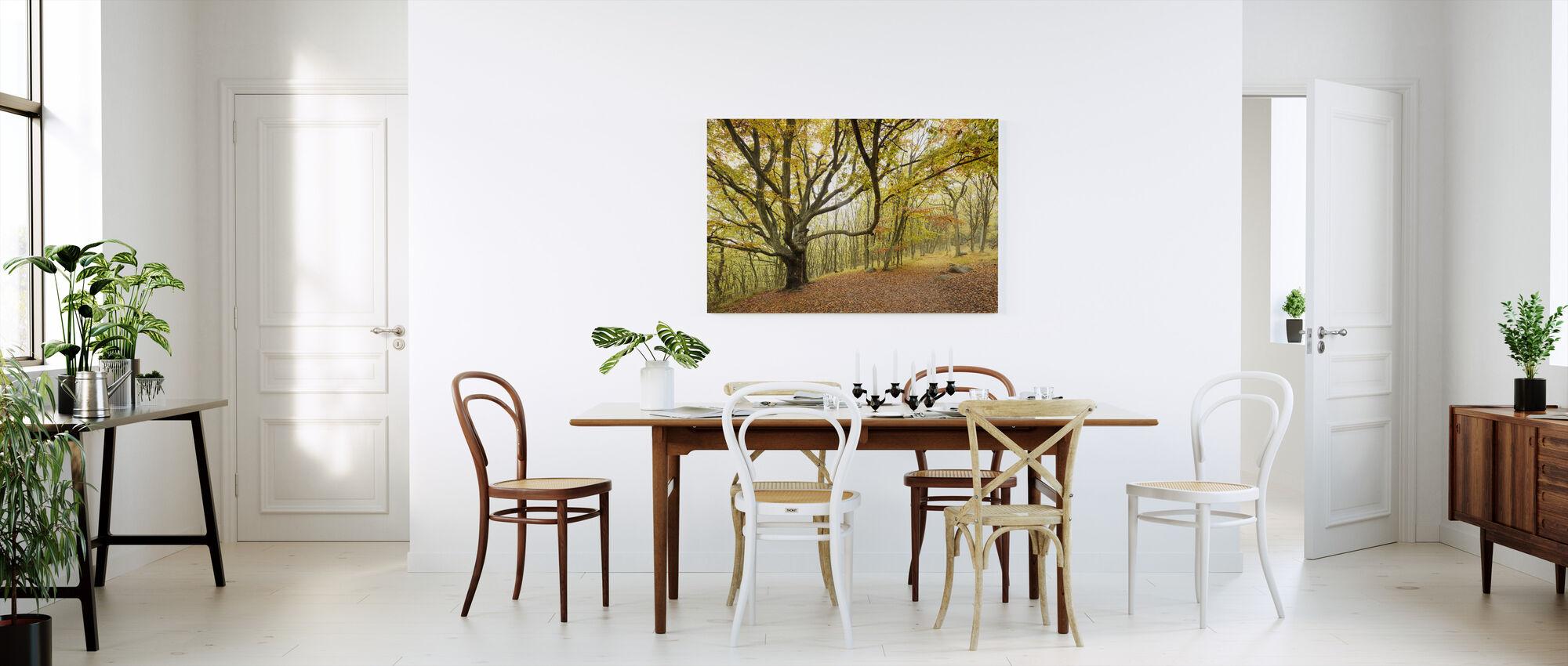 Autumn Trees in Stenshuvud, Sweden, Europe - Canvas print - Kitchen
