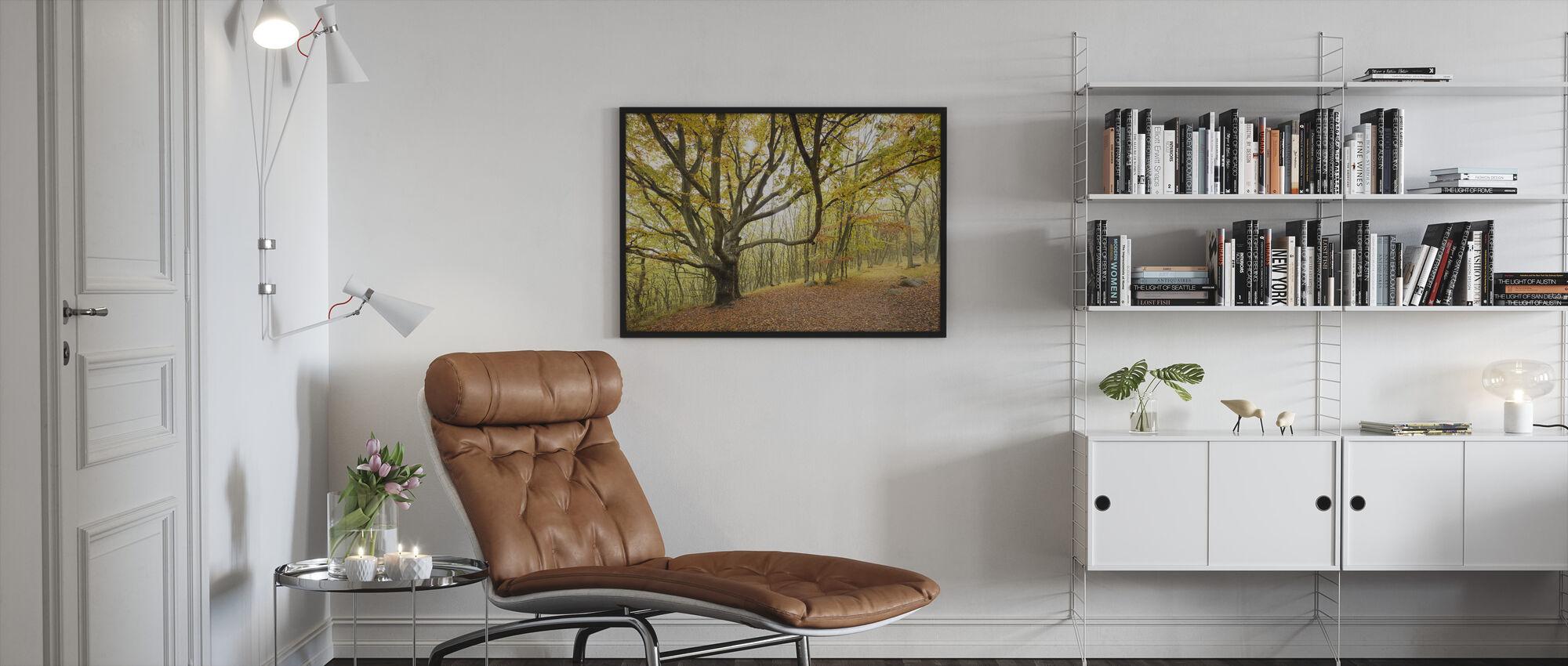 Autumn Trees in Stenshuvud, Sweden, Europe - Framed print - Living Room