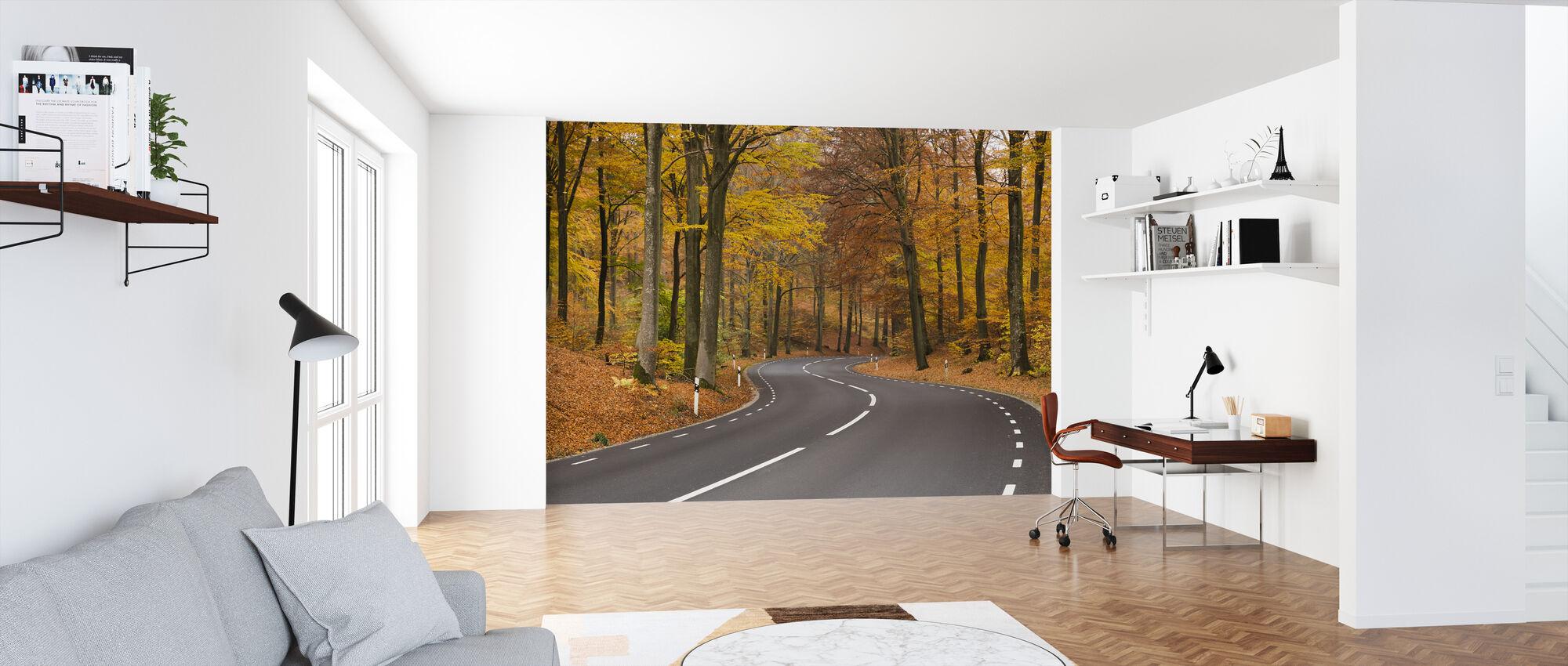 Beech tree Close up - Wallpaper - Office