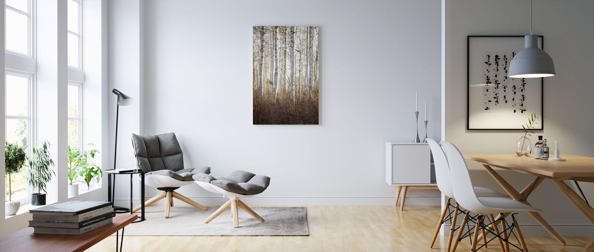 Bjørkeskog i Dalarna, Sverige, Europa - Lerretsbilde - Stue