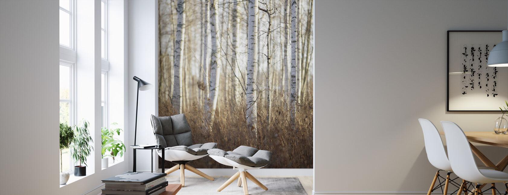 Birch Forest in Dalarna, Sweden, Europe - Wallpaper - Living Room