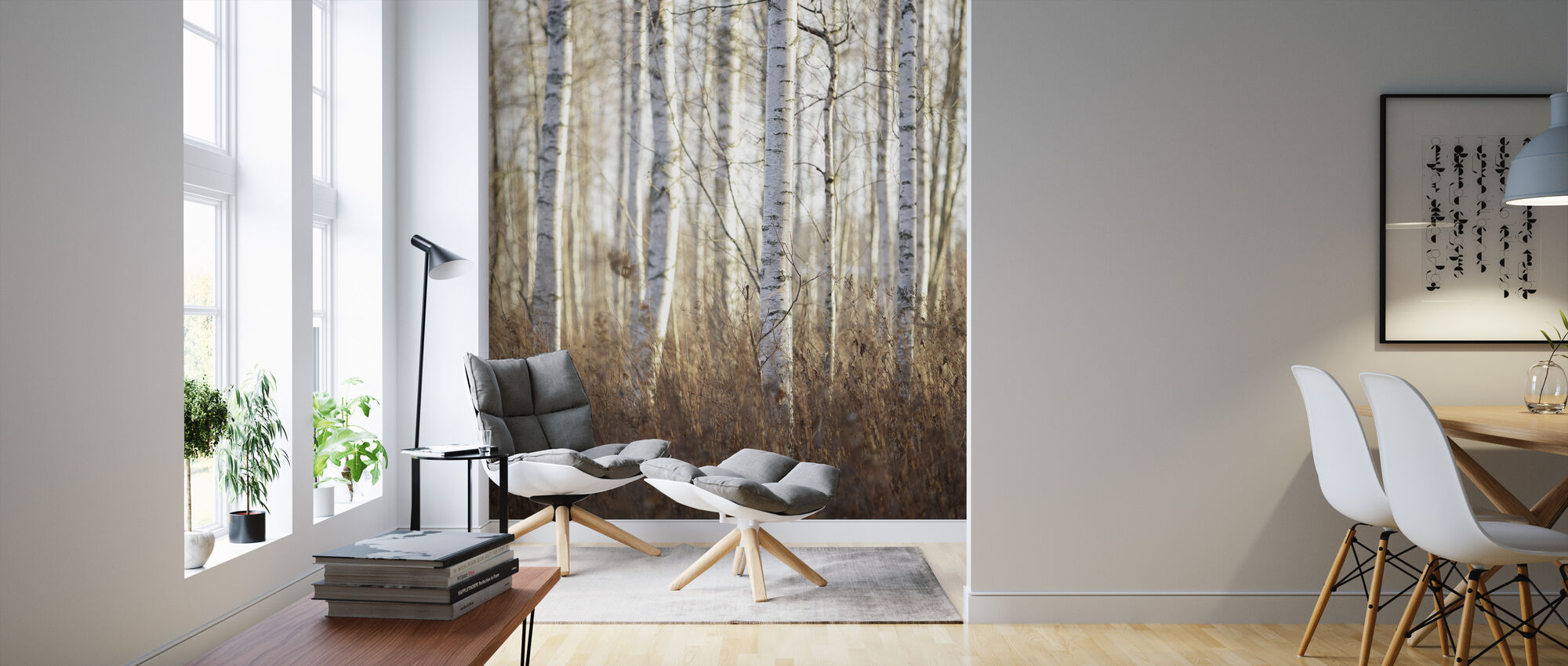 Birch Forest in Dalarna, Sweden, Europe - Wallpaper - Living Room