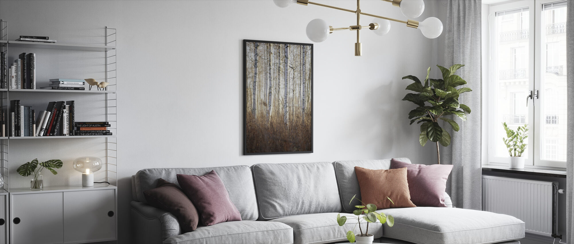 Birch Forest in Dalarna, Sweden, Europe - Framed print - Living Room
