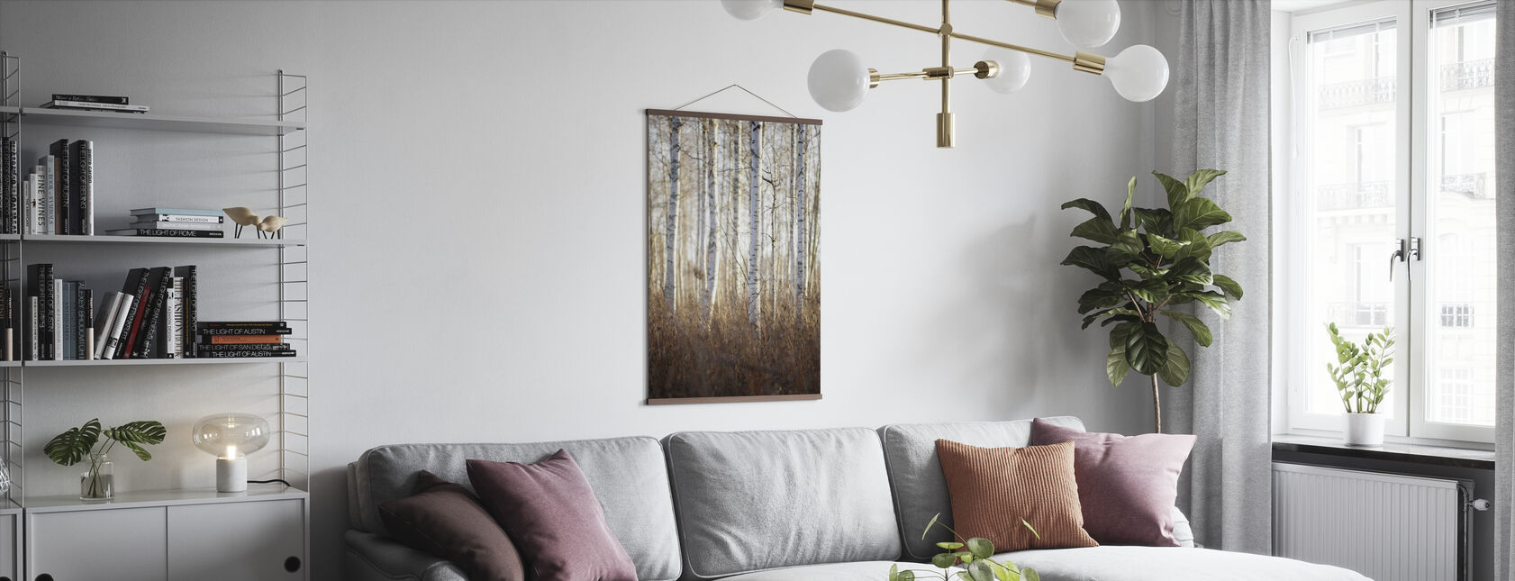 Birch Forest in Dalarna, Sweden, Europe - Poster - Living Room
