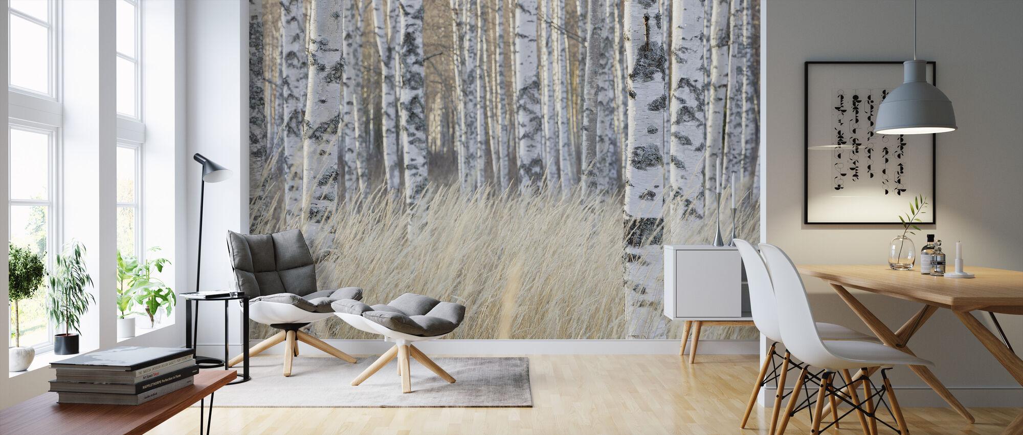Bosque de Abedul Claro - Papel pintado - Salón