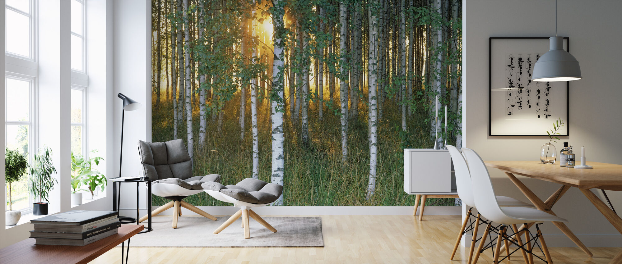 Sunbeam through Birch Forest - Wallpaper - Living Room