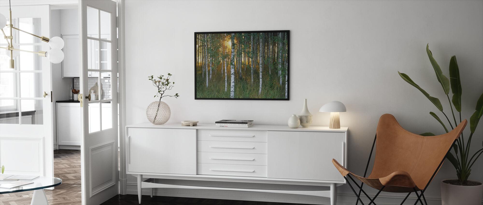 Sunbeam through Birch Forest - Framed print - Living Room