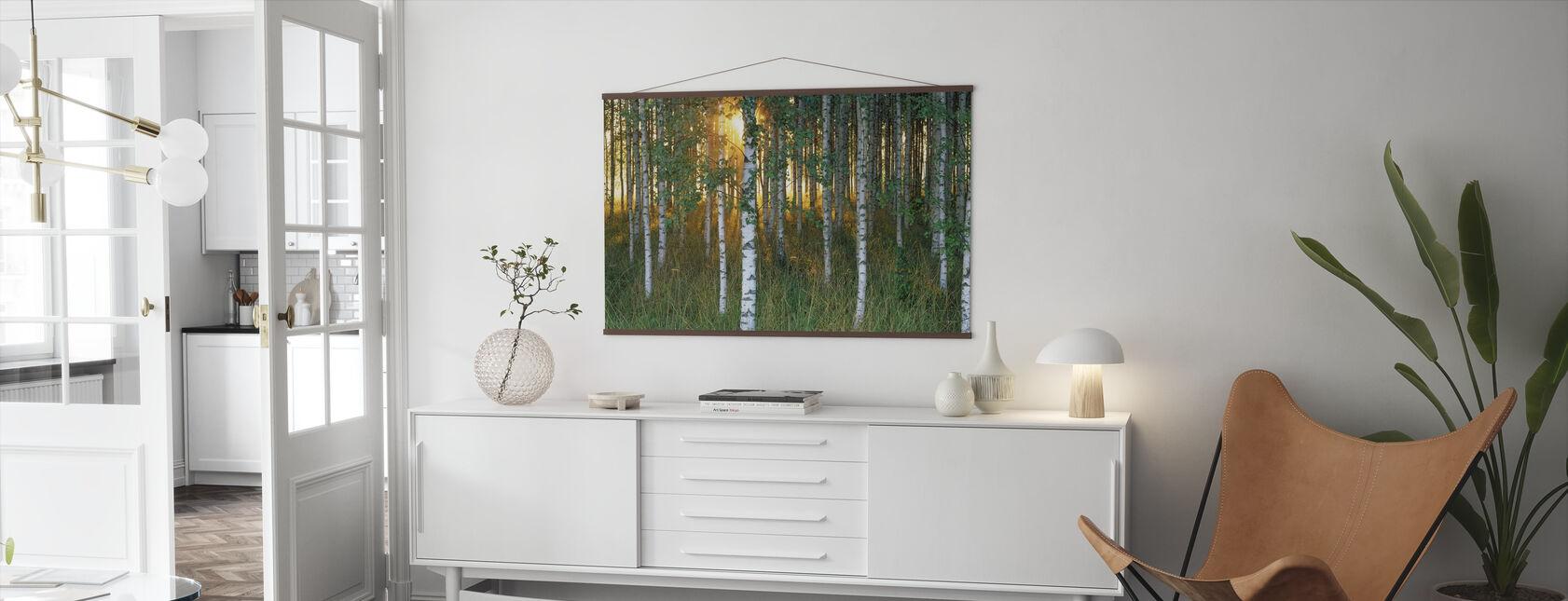 Sunbeam gjennom Birch Forest - Plakat - Stue