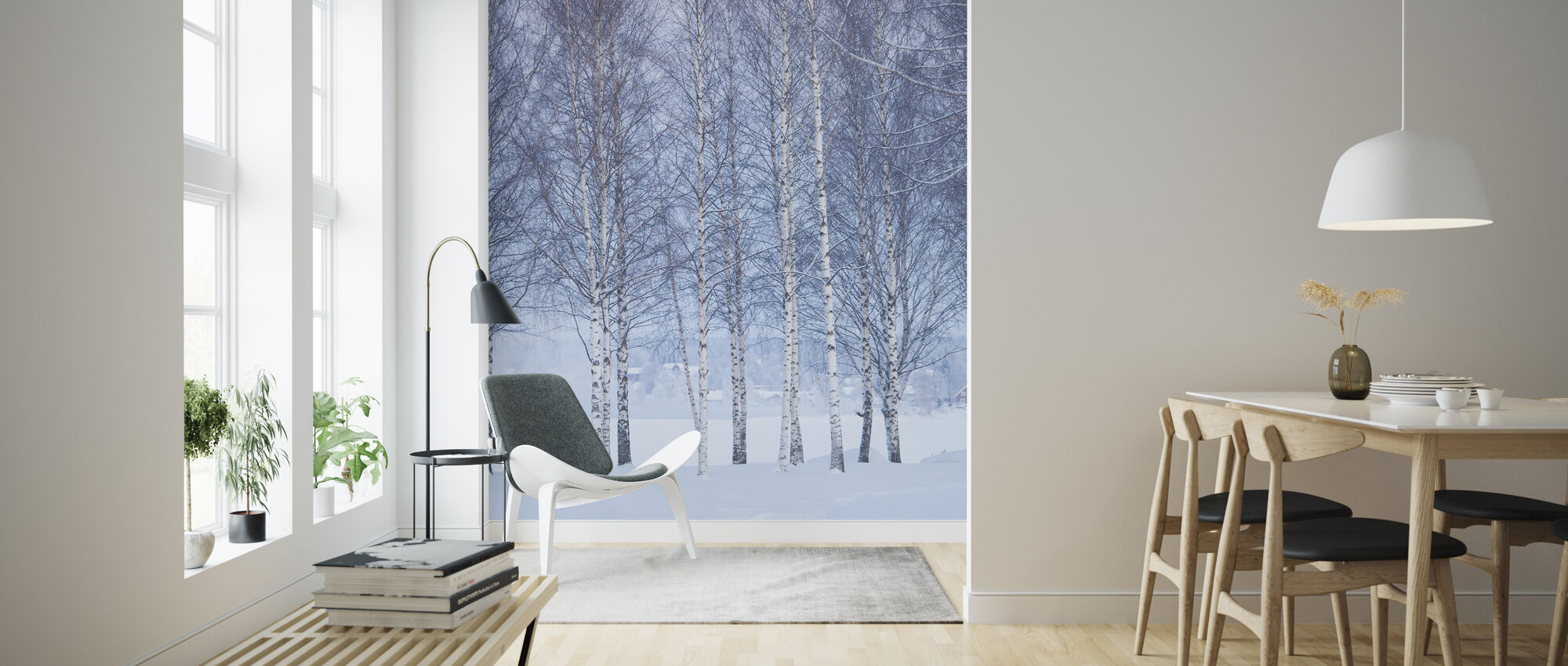 Winter Birch in Mora, Sweden - Wallpaper - Living Room