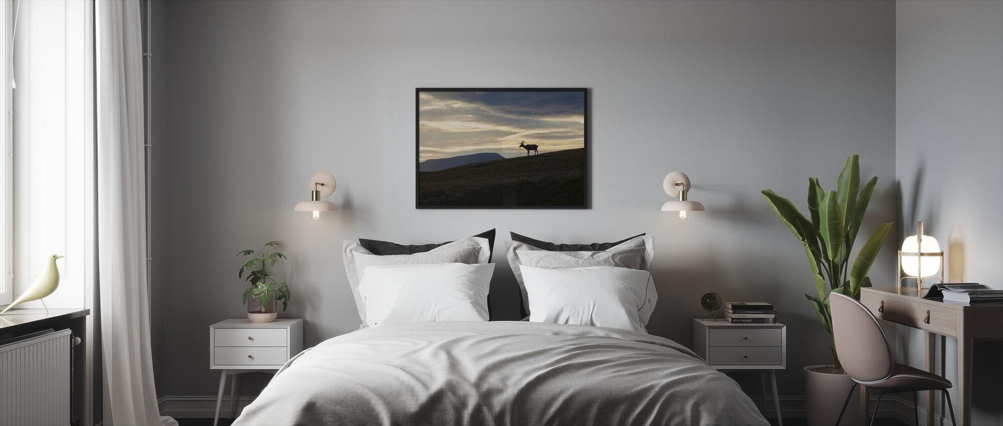 Reindeer at Helagsfjället, Sweden - Framed print - Bedroom