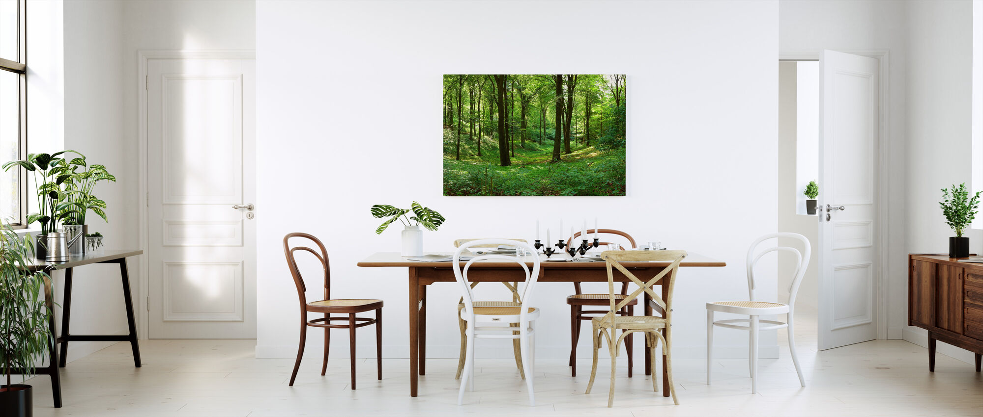 Panorama forest - Canvas print - Kitchen