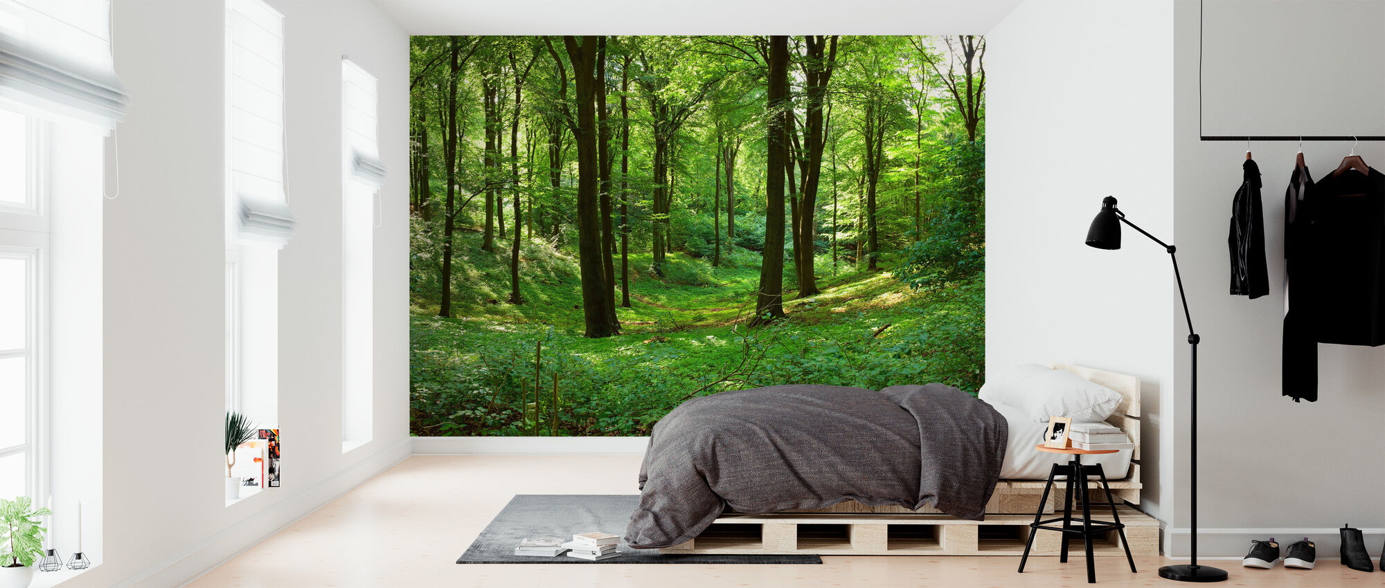 Panorama Forest Affordable Wall Mural Photowall