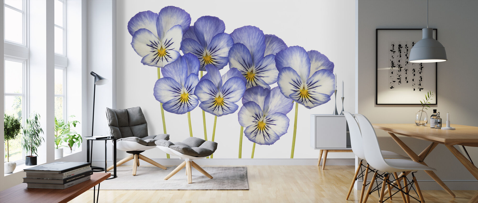 Blue Pansies - Wallpaper - Living Room