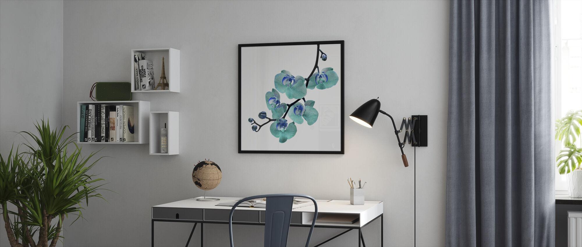 Blue Phalaenopsis Orchid - Framed print - Office