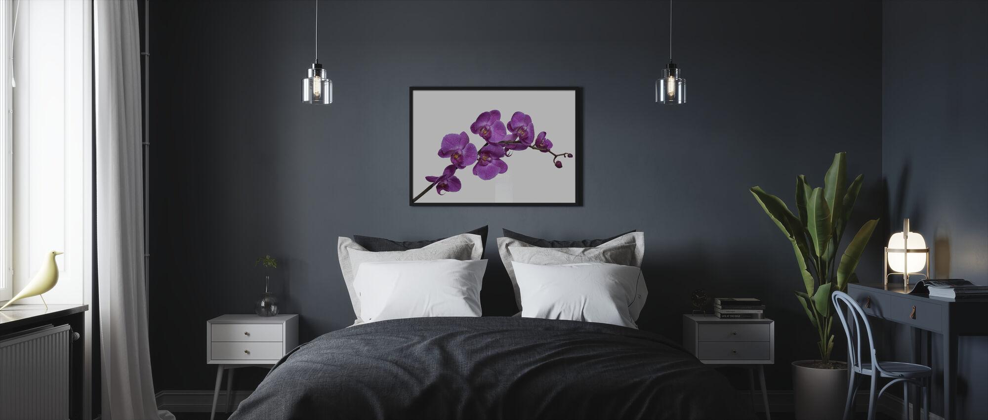 Crisp Orchids - Framed print - Bedroom