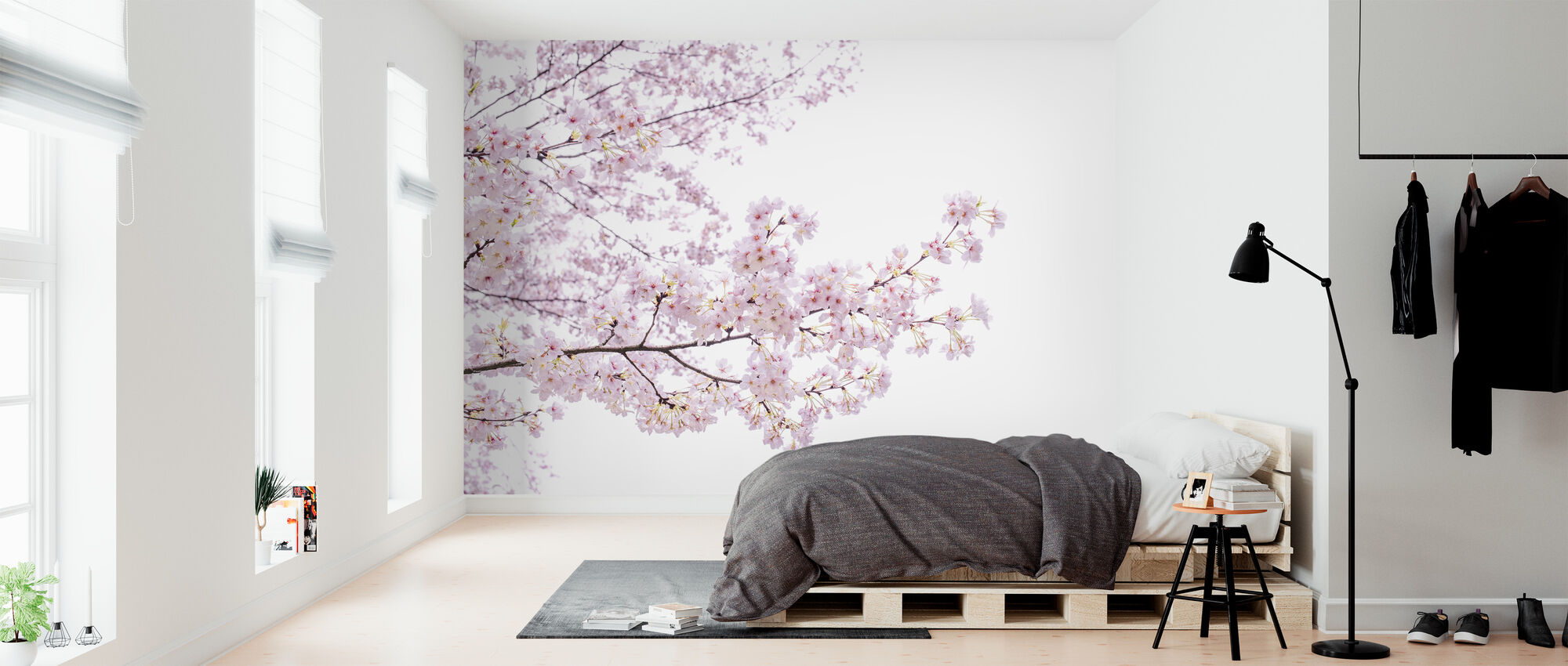 Divine Cherry Blossoms - Wallpaper - Bedroom
