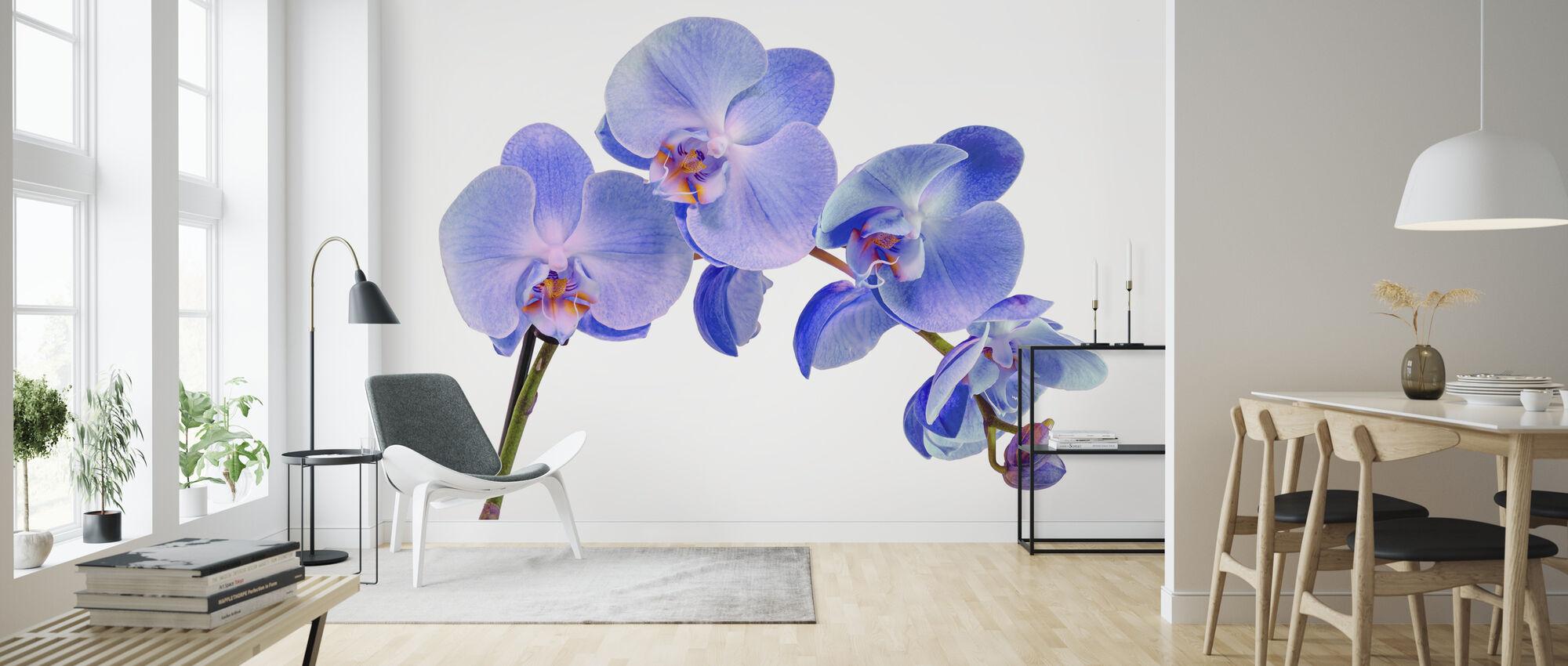 Orchid Twig - Wallpaper - Living Room