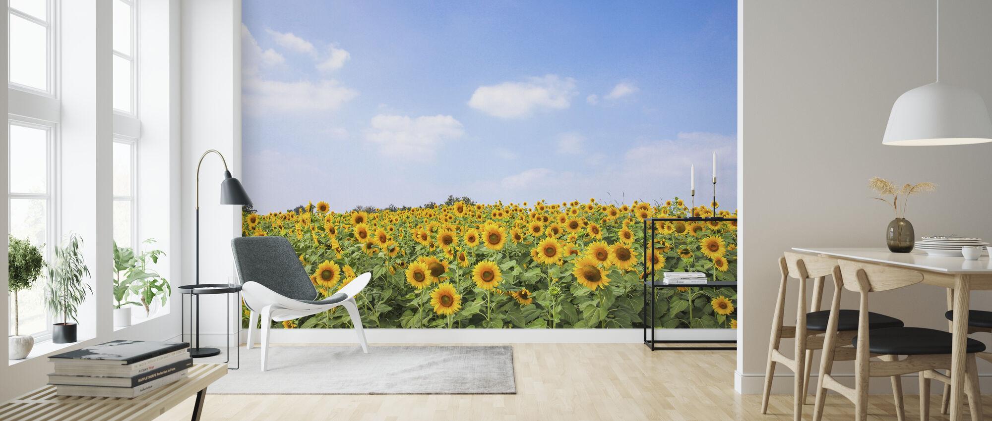 Pehmeät auringonkukat - Tapetti - Olohuone