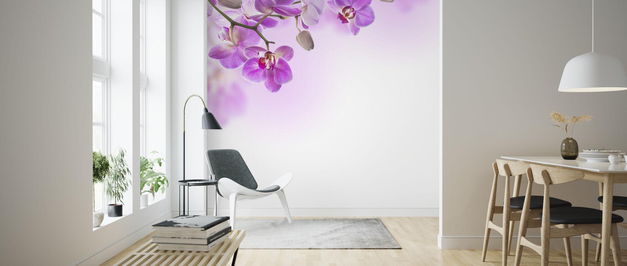 Trooppinen fuksia orkideat - Tapetti - Olohuone