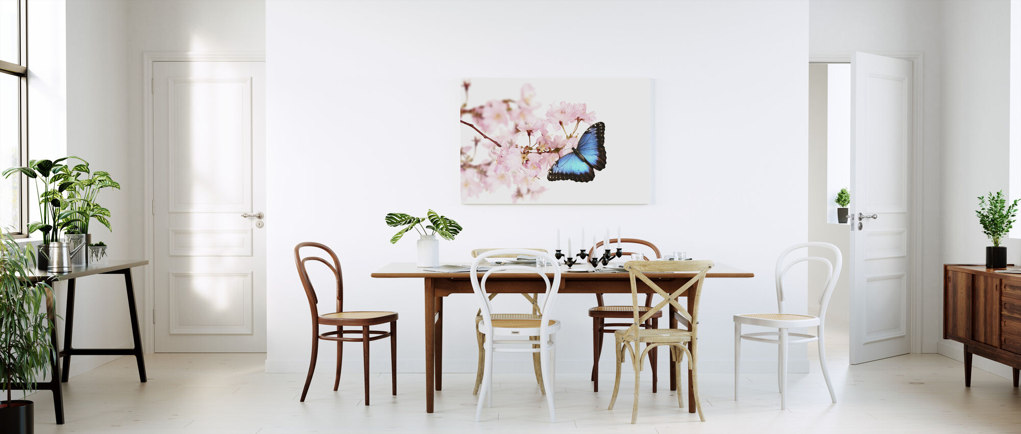 Butterfly Cherry Blossoms - Canvas print - Kitchen