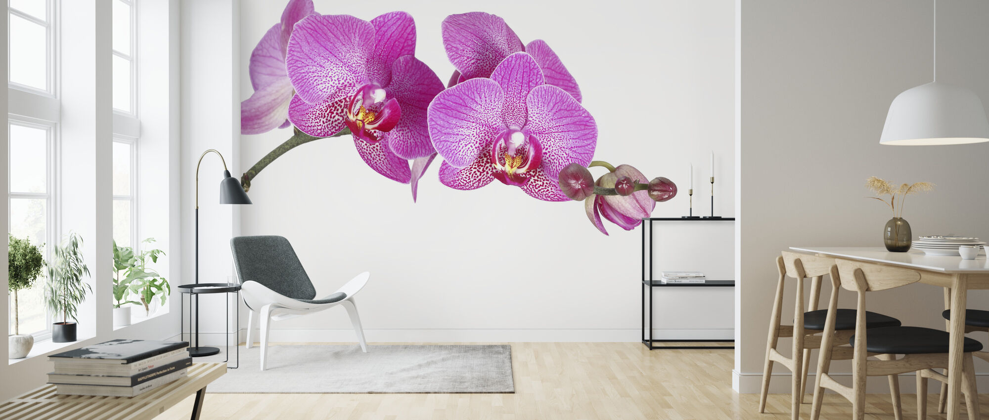 Innocent Orchid - Wallpaper - Living Room