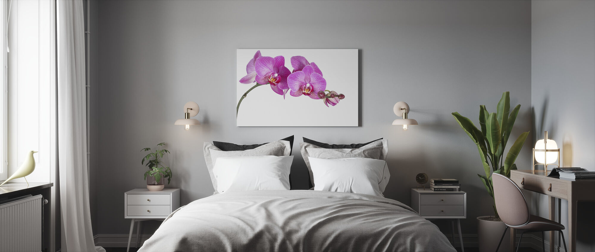 Innocent Orchid - Canvas print - Bedroom