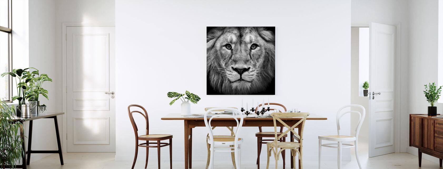 Leeuwen & grote katten