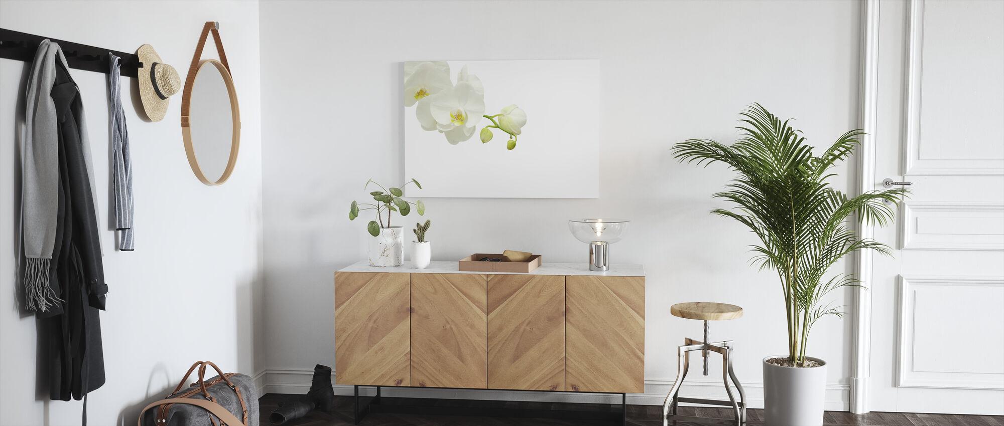Hvid Elegant Orkidé - Billede på lærred - Entré