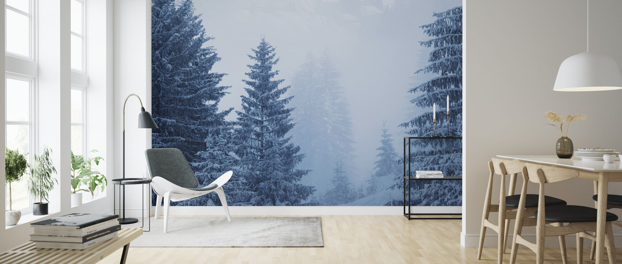 Coniferous Forest in Austria, Europe - Wallpaper - Living Room