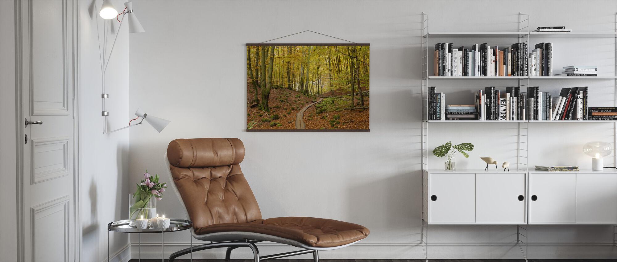 Soderasen Beech Wood, Sweden, Europe - Poster - Living Room
