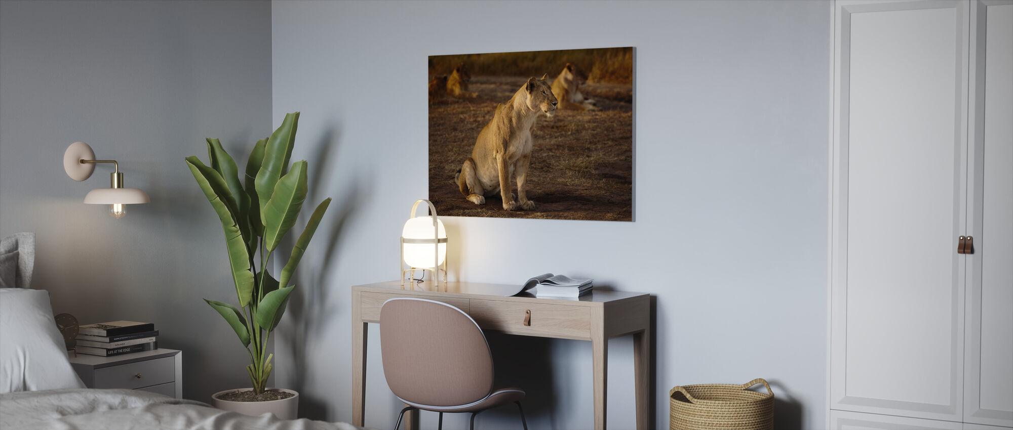 Lioness in Masai Mara - Canvas print - Office