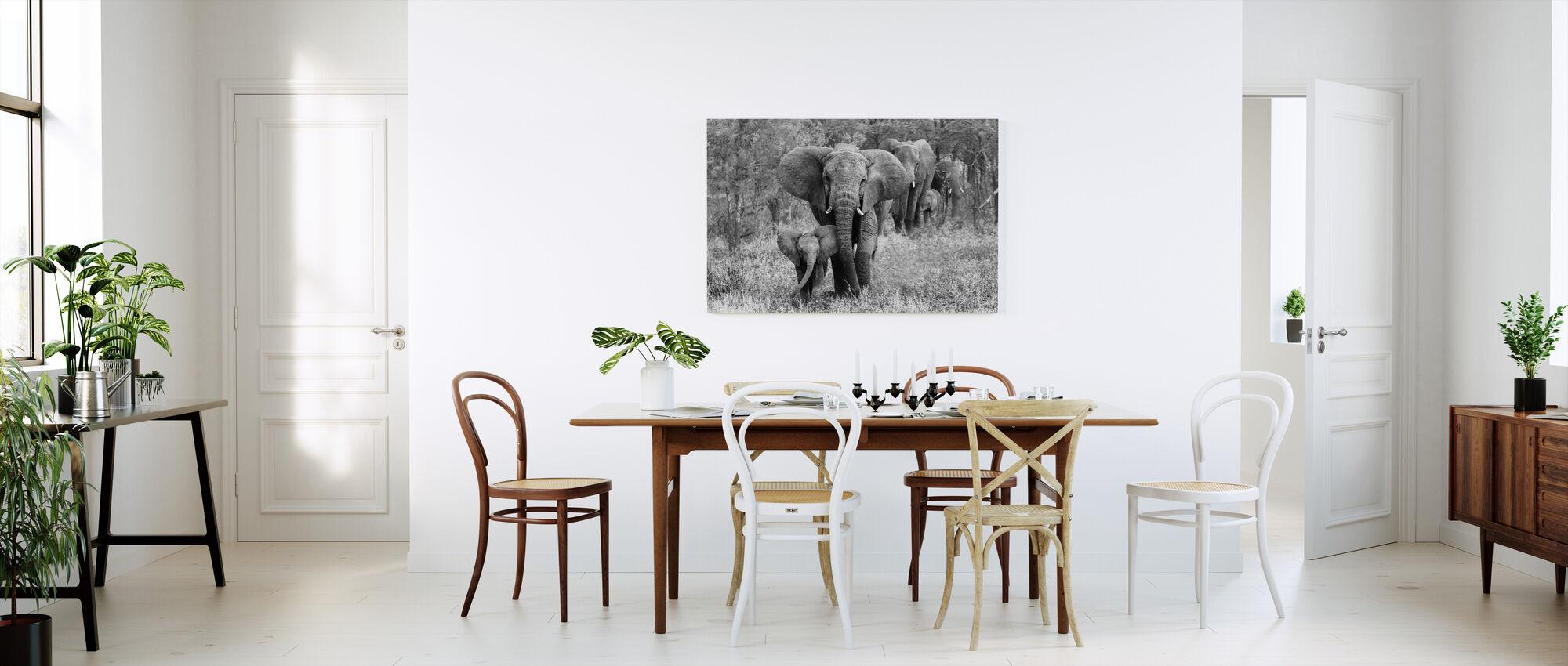 Elefamily, black and white - Canvas print - Kitchen