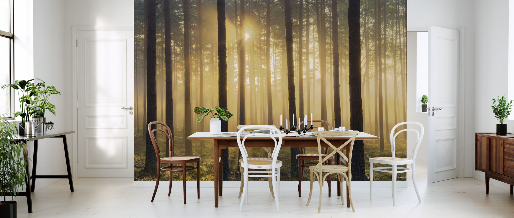 Pine Tree Morning - Wallpaper - Kitchen