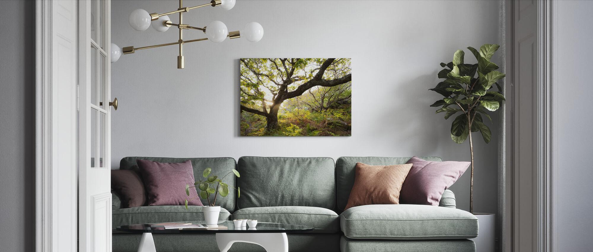Backlit Scottish Oak Wood - Canvas print - Living Room